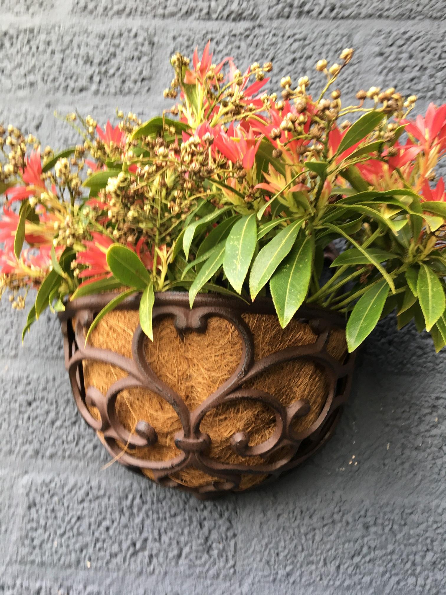 tags planter planten bloemen bloembak bloembakken antieke mediterrane balkon planten plantenbak voor balkon bloembakken balkon bloembakken